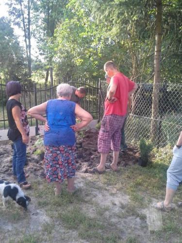 Sadzenie krzewów - 2-3 VIII 2016